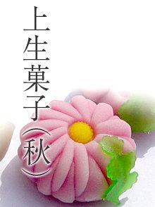 上生菓子(秋)